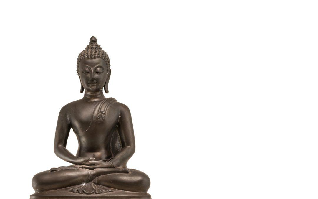 Meditation #1: Meet Your Mind